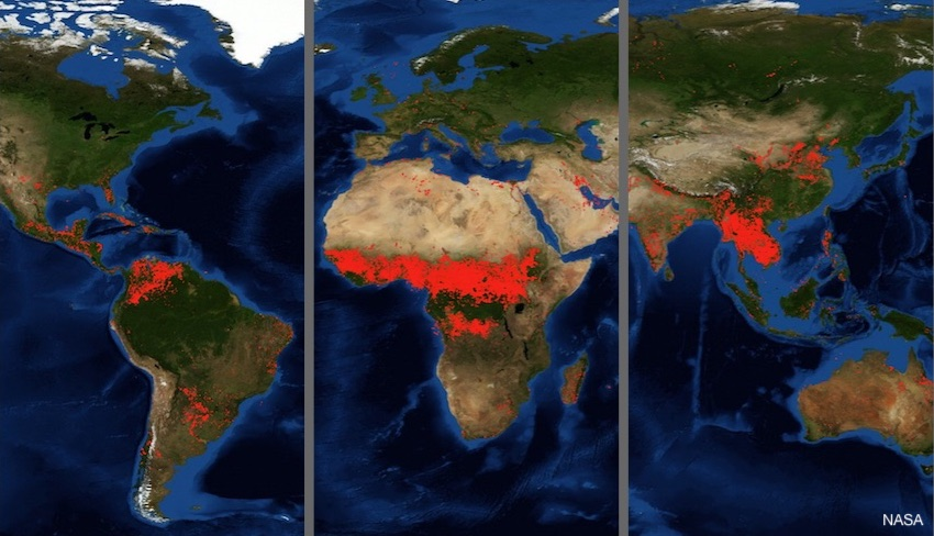 Forest Fires Worldwide NASA Map